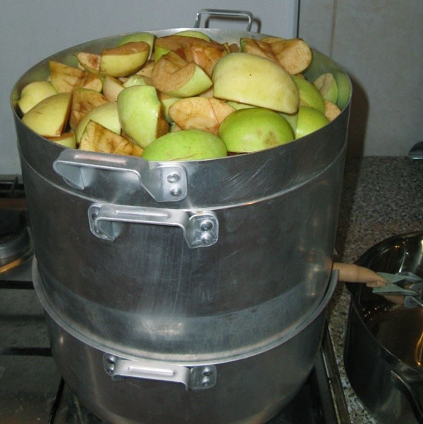 cook in a juice cooker